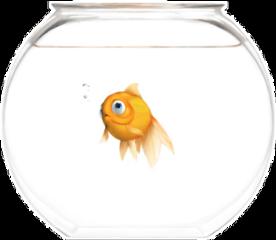freetoedit fish fishbowl goldfish