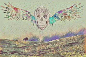 mysteriouslandscape freetoedit summer end colors