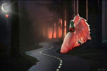 angel heart apricot woodland moon freetoedit