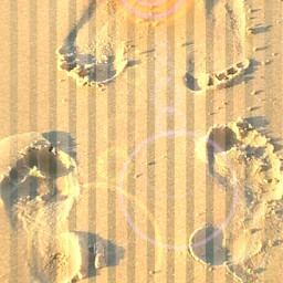 freetoedit footprints sand sunshine dailyremixsticker