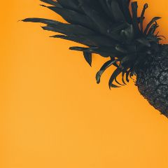 freetoedit pineapple fruit orange minimal