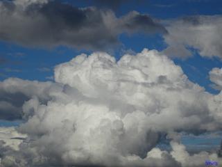 photography nature bluesky cloudscape fluffynessabounds