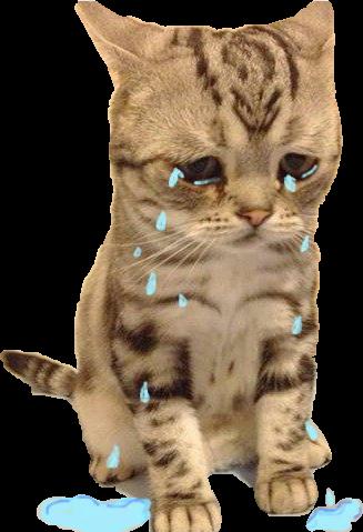 cat sadcat sad tears cry - Sticker by Soffya.Chu