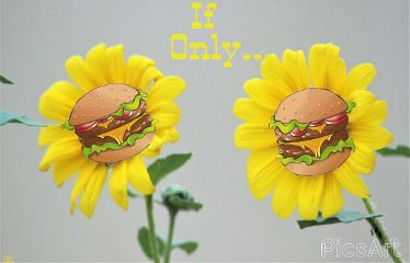 freetoedit cheeseburgerstickerremix colorful picsartstickers myoriginalphoto