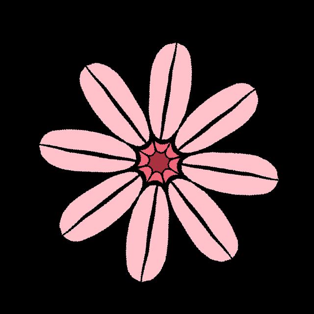 #flower#freetoedit