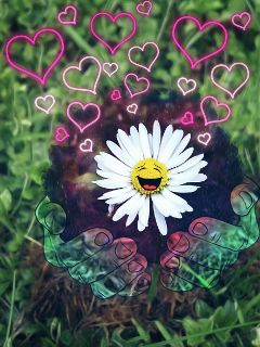daisy stickers hipstergalaxy happiness