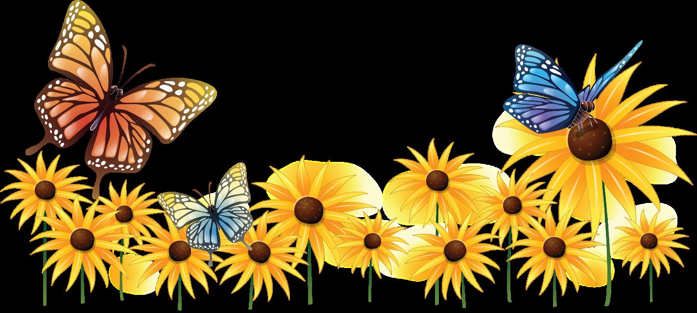 #butterflies #flower