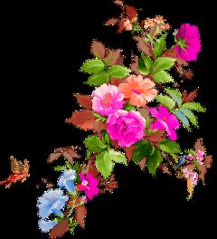 flowers fleurs roses flores ftestickers freetoedit