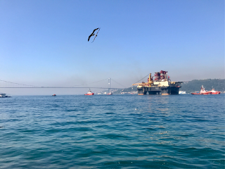 sea ships freetoedit
