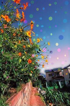colorful badlandsmagiceffect urban freetoedit