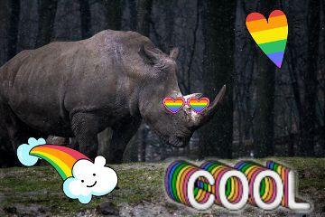 forest cool raimow rhinoday freetoedit
