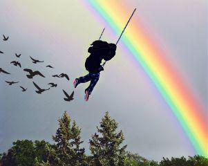 freetoedit rainbow shadow birds swing