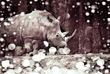 freetoedit rhinoday protecttheenviroment carefornature
