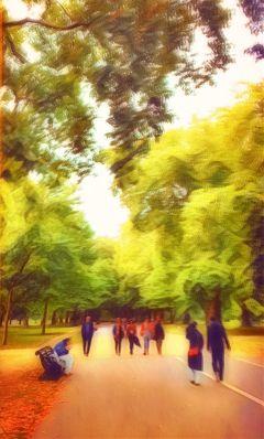 london tree park