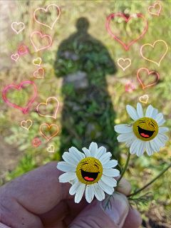 daisy magiceffectmoonlight stickers happiness love