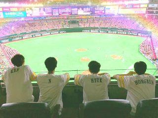 vixx k-pop 韓国 love 始球式 freetoedit