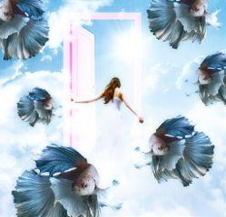 opendoorstickerremix sky clouds girl bettafish freetoedit