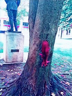 freetoedit galaxymagiceffect sqiurrel tree cute