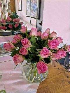 freetoedit photography flowers roses rosa