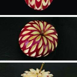 appleseason beautiful apples art carving freetoedit