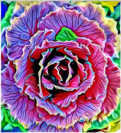 freetoedit ornamental