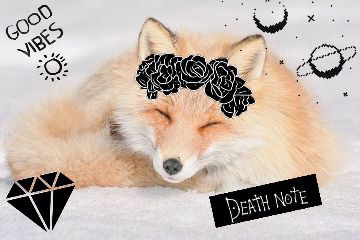 freetoedit deathnote fox goodvibes flower