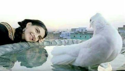 freetoedit girl smile peace