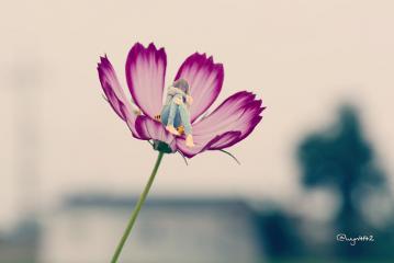 freetoedit small art flower