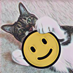 freetoedit happy cat happycat