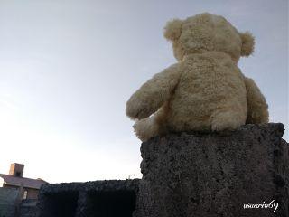 photography teddybear home house sunset