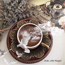 turkishcoffee coffeelovers coffeetime cool t%c3%bcrkkahvesi freetoedit