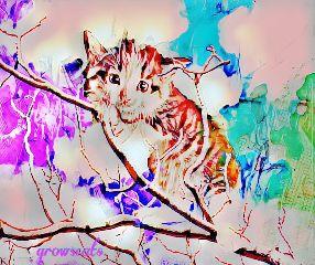 freetoedit kitten tree manyeffects catsofpicsart