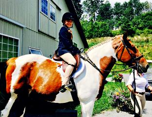 freetoedit newyork horse riding horseshow