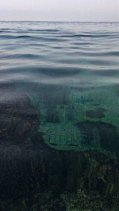 pure water marinelife diving bluegreen freetoedit