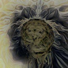 freetoedit fear beast distort