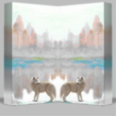 mirror wolf artic likes