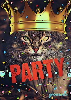 partystickerremix freetoedit cat crown king
