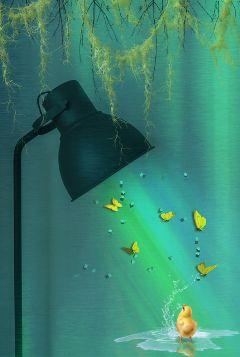 freetoedit light lamp outdoors madewithpicsart