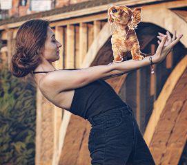 puppystickerremix freetoedit dog puppy dance