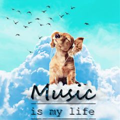 freetoedit yesi_502 madewithpicsart dogs musicismylife