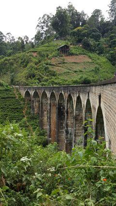 freetoedit nature travel bridge