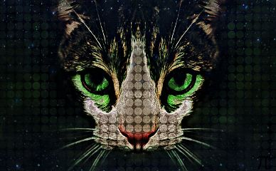 freetoedit cat neoneffect hue artistic