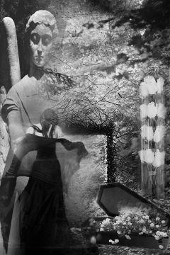 doubleexposure blackandwhitephoto darkart darkness garden