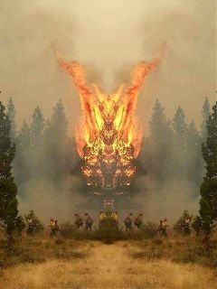 napaonfire freetoedit wildfire prayforusall