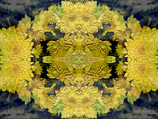 mirrored flower yellow sky cloud