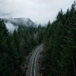 freetoedit railway railwaytracks tracks nature