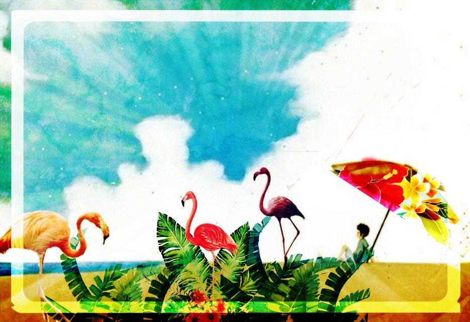 #flamingoparty #beachside #sunnysideup #colorsplash