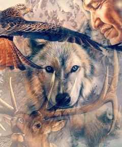 freetoedit native nativeart wildlifeart the