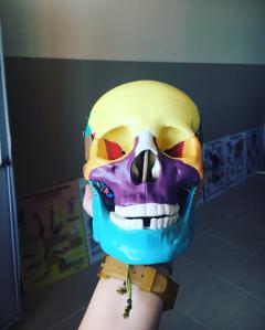 freetoedit halloween skull