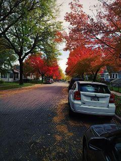 freetoedit fallcolors